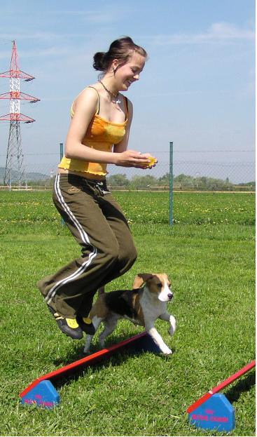 """Obrázek """"http://beagle.websnadno.cz/hopik.JPG"""" nelze zobrazit, protože obsahuje chyby."""